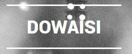 Dana Al Owaisi logo